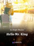 hello-mr-king